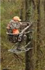 Safety is Paramount for Hunters using Tree Stands